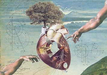 szív agy kiegyensúlyozás